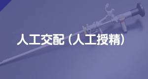 人工交配(人工授精)